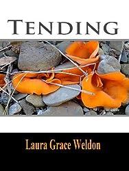 Tending