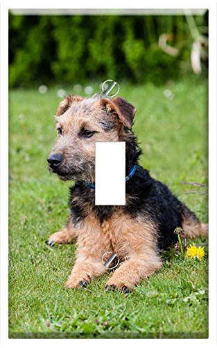 Lakeland One Light Wall - Switch Plate Single Toggle - Lakeland Terrier Dog Terrier Pedigree Cute Puppy 3