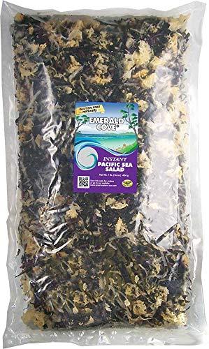 Emerald Cove Instant Pacific Sea Vegetable Salad, 16-Ounce Bag (Wakame Vegetable Sea)