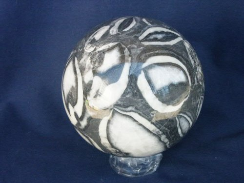 4'' Fossil Sphere, 1.30.3