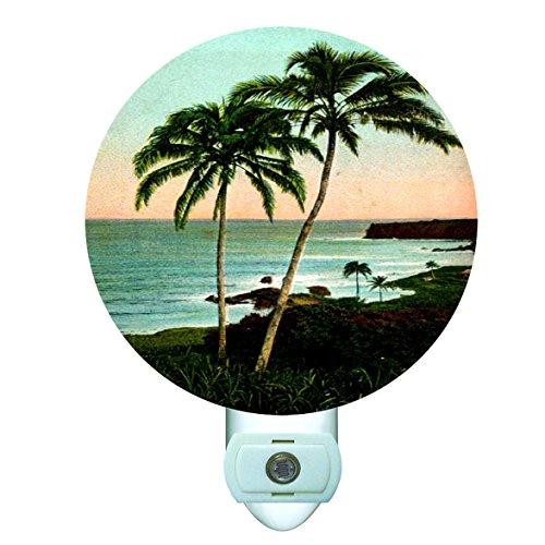 Beach Palm Trees Decorative Round Night Light - Palm Tree Fantasy