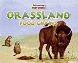 Grassland Food Chains