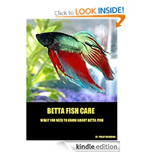 Betta Fish Care - Everything You Need To Know About Betta Fish Philip Holbrook