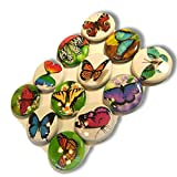 "Custom & Novelty {1"" Inch} 12 Bulk Pack, Mid-Size Button Pin-Back Badges for Unique Clothing Accents, Made of Rust-Proof Metal w/ Beautiful Butterflies In Nature Set Floral Fun Styles [Multicolor]"