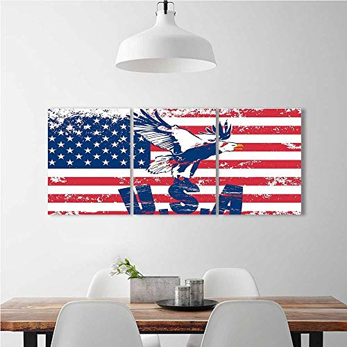 Cheap  aolankaili 3 Pieces Multiple Pictures Wall Art Frameless Looking National with Eagle..