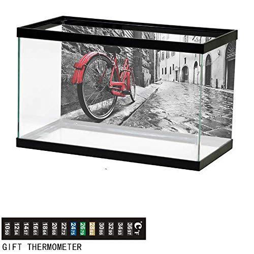 Cobblestone Cascade - bybyhome Fish Tank Backdrop Bicycle,Cobblestone Narrow Street,Aquarium Background,72