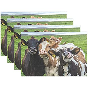 Set//4 Your Heart/'s Delight Animal Stack Farm Life Placemat