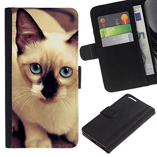 LASTONE PHONE CASE / Luxe Cuir Portefeuille Housse Fente pour Carte Coque Flip Étui de Protection pour Apple Iphone 6 PLUS 5.5 / Siamese Thai Cat Balinese Blue Eyes