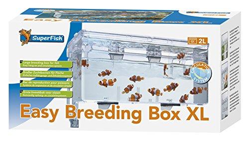 Breeding Box Trap With Circulation System 2l