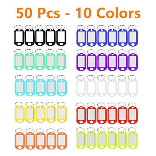 Key Tags, 50 Pack Plastic Key Tags with Split Ring and Label...