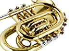 EastRock Pocket Trumpet Gold Lacquer Brass Bb