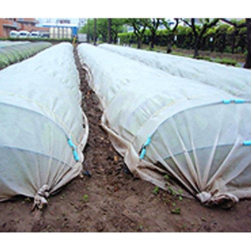【1本】 2.5m × 100m 白(透明) ぬくぬく 遮光ネット ANW10 寒冷紗 JX ANCI タ種 代不 B073JDJ6Z4