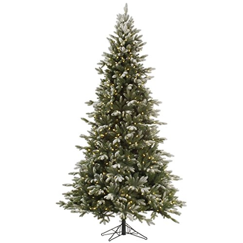 "picture of Vickerman 323274 - 7.5' x 54"" Frosted Balsam Fir 750 Warm White Italian LED Lights Christmas Tree (A141676LED)"