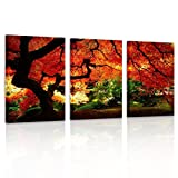 Pyradecor 3 Piece Giclee Canvas Prints Wall Art Red Maple Trees Paintings Pictures for Living Room Bedroom Office Decorations Modern Stretched and Framed Forest Landscape Ready to Hang Artwork