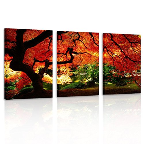 Pyradecor 3 Piece Giclee Canvas Prints Wall Art Red Maple Trees Paintings Pictures for Living Room Bedroom Office Decorations Modern Stretched and Framed Forest Landscape Ready to Hang Artwork ()