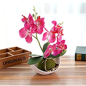 FYYDNZA Fashion Three Fork Butterfly Orchid Bonsai Flower Artificial White Potted Set Wedding Home Wedding Party Decoration 14