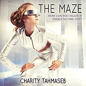 The Maze Audiobook