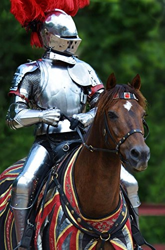 Jousting Horse Costume (KNIGHT IN SHINING ARMOR - Fine Art Photographic Print 12 X 18 Inch Medieval Times Joust)