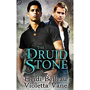 The Druid Stone Hörbuch