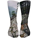 Women Men Classics Socks Path Trees Lake Nature Athletic Stockings 30cm Long Sock One Size