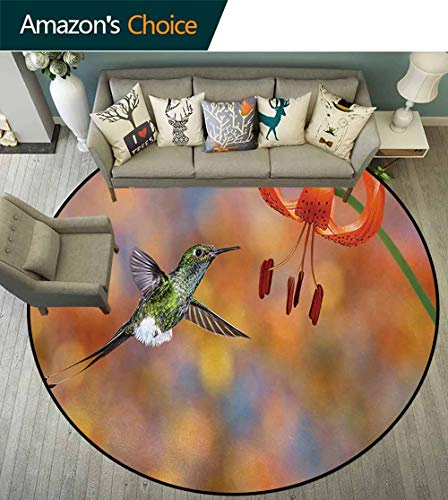 (DESPKON-HOME Hummingbird Round Rugs for Bedroom,The Booted Racket-Tail Feeding Nectar from Tiger Lily Blur Background Photo Circle Rugs for Living Room Diameter-39 Inch,Orange Green)