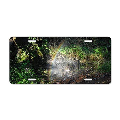 - Kingsinoutdoor Hidden Treasure in The Woods Aluminum License Plate, Front License Plate, Vanity Tag for Car (New) 12