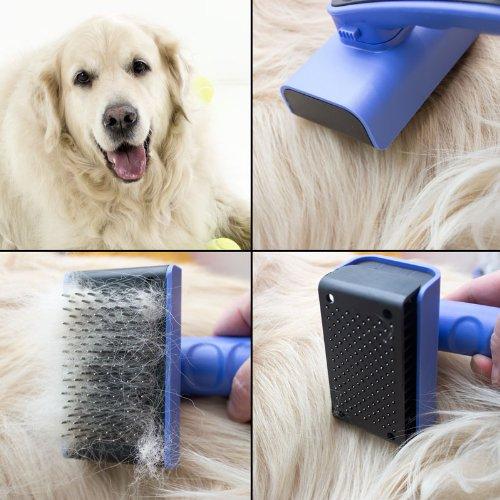 NEW Self Cleaning Dog Brush For Golden Retriever