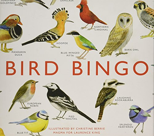 Bird Bingo make fun camping activities kids love and adults will too to keep from being bored and fun campfire games are just the start of tons of fun camping ideas for kids!