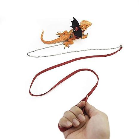 Correa de Piel con alas para Mascotas de Reptile Pet Traction Rope ...