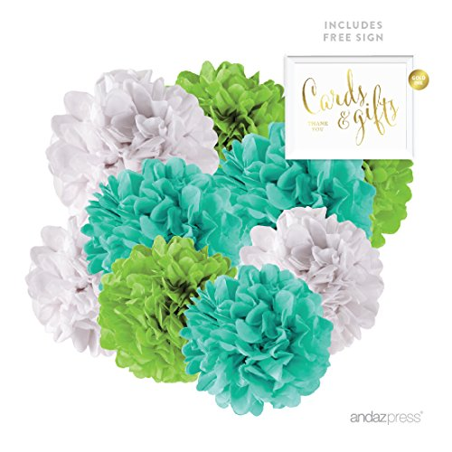 Andaz Press Hanging Tissue Paper Pom Poms Party Decor Trio Kit with Free Party Sign, Diamond Blue, Kiwi Green, White, 16-Pack, For Easter, Baby Shower Decorations ()