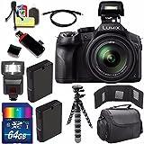 Panasonic Lumix DMC-FZ300 Digital Camera + Extra battery + 64GB Bundle 3