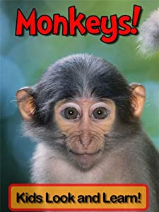 Monkeys! Learn About Monkeys and Enjoy Colorful Pictures - Look and Learn! (50+ Photos of Monkeys)
