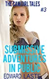 Submissive Adventures in Public: Erotic BDSM (The Cam Girl Tales Book 3)