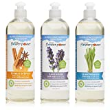 kitchen spice soap - Natural Flower Power - Natural Dish Soaps Variety Pack (Citrus & Spice, Lavender, and Lemongrass), Effectively Cuts Grease and Grime, Non-Toxic and Biodegradable, Sulfate Free - 16 Ounce (Pack of 3)