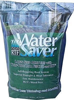 BARENBRUG USA 11110 Water Saving 10 lb Grass Seed