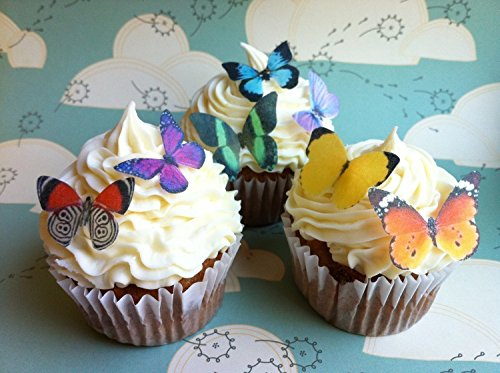 Decorating Butterfly Cake (Edible Butterflies © - Small Assorted Set of 24 - Cake and Cupcake Toppers, Decoration)