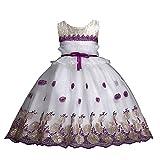 Baby Christmas Dress HEHEM Flower Girl Princess Bridesmaid Pageant Baby Tutu Tulle Lace Party Wedding Dress