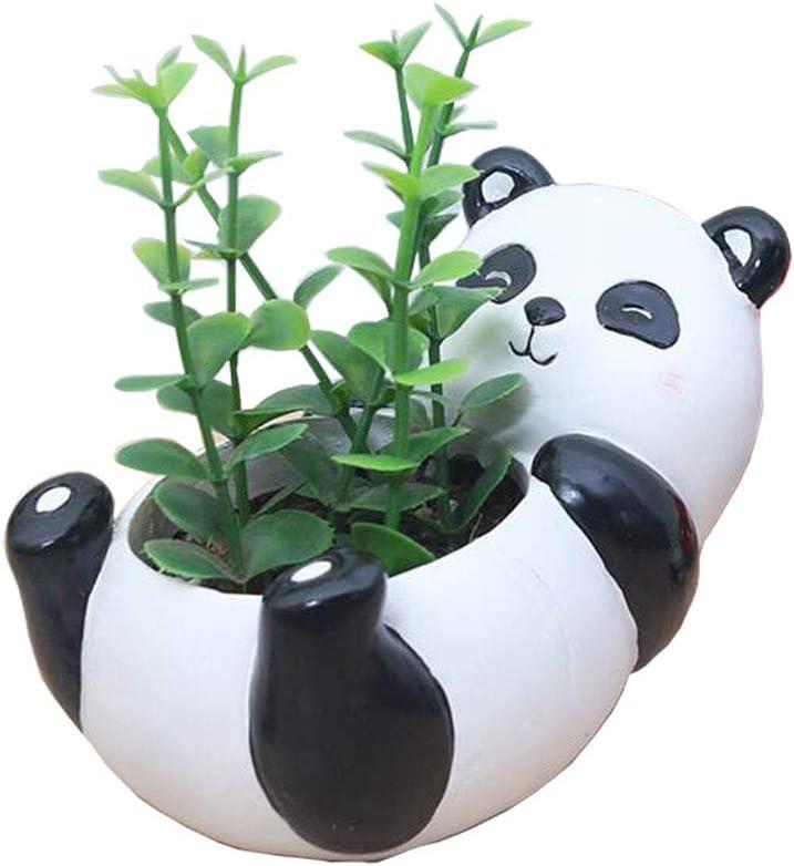 Youfui Home Decor Pot, Animal Succulent Planter Flowerpot for Home Office Desk Decoration (Cute Panda)
