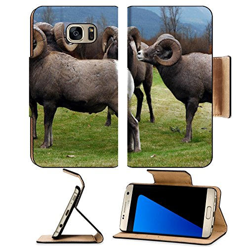 Liili Premium Samsung Galaxy S7 Edge Flip Pu Leather Wallet Case Image Id  2038455 This Group Of Four Rocky Mountain Bighorn Sheep Has Formed Their Own Square Dance