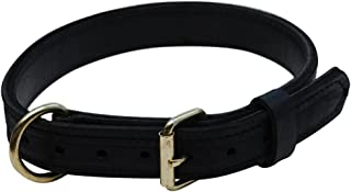 product image for Signature K9 1-1/4-Inch Mil Spec Agitation Collar