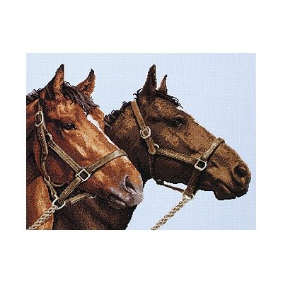 Janlynn Platinum Collection Horse Companions Cntd X-Stitch K