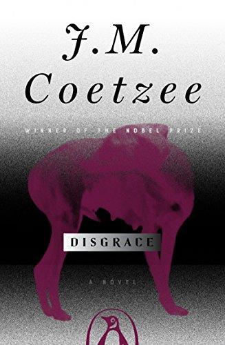 Disgrace: A Novel