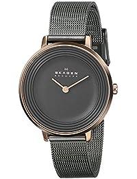 Skagen Women's SKW2277 Ditte Grey Mesh Watch
