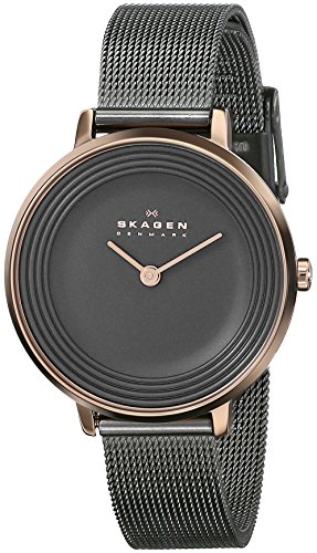 Skagen Women's SKW2277 Ditte Grey Mesh (Skagen Womens Black Mesh Watch)