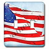 3dRose lsp_56256_2 America Painted Flag Patriotic Art USA Double Toggle Switch