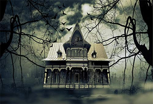 Leyiyi 10x6.5ft Gothic Halloween Backdrop Vintage Abandoned House Old Rustic Cottage Western Ghost Room Gloomy Sky Bats Photography Background Horror Costume Carnival Photo Studio Prop Vinyl Banner