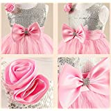 Flower Girl Little Princess Pink Sleeveless Dress Lovely Bow Banquet Party Skirt Gzq1 (4-5 Years)