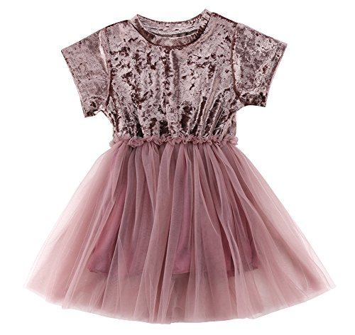 Little Kids Baby Girls Princess Dress Short Sleeve Velvet Party Pageant Dresses Skirts (Pink, 90 (1-2 Years))