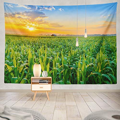 WAYATO Nature-Landscape Wall Hanging Tapestry, 80 x 60 inch Beautiful Morning Sunrise Field Farm Landscape Sky Green Sunset Sun for Home Decorations Bedroom Dorm Decor