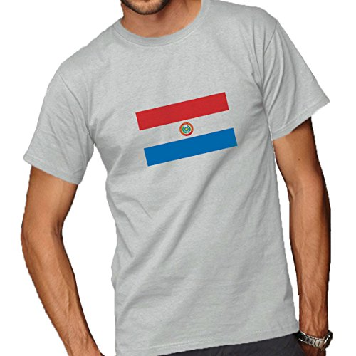 Paraguay Flag Front Adult T-Shirt Ash Grey Large